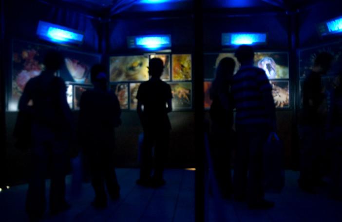 Exhibition of 24 Hours Underwater-003