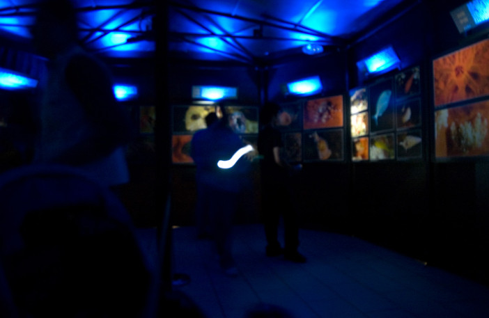 Exhibition of 24 Hours Underwater-004