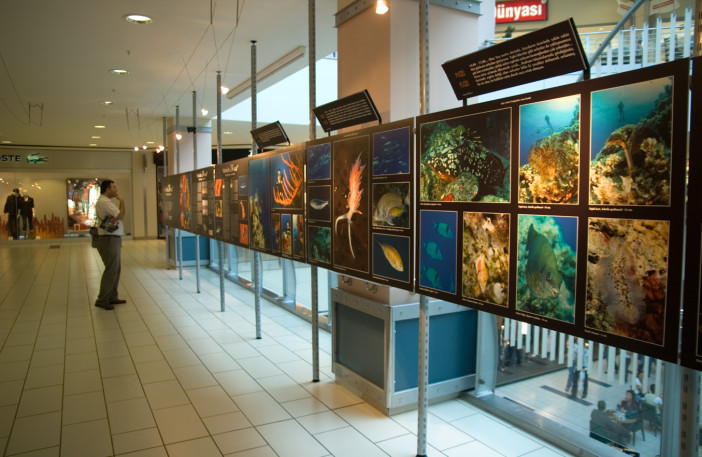 Exhibition of 24 Hours Underwater-005