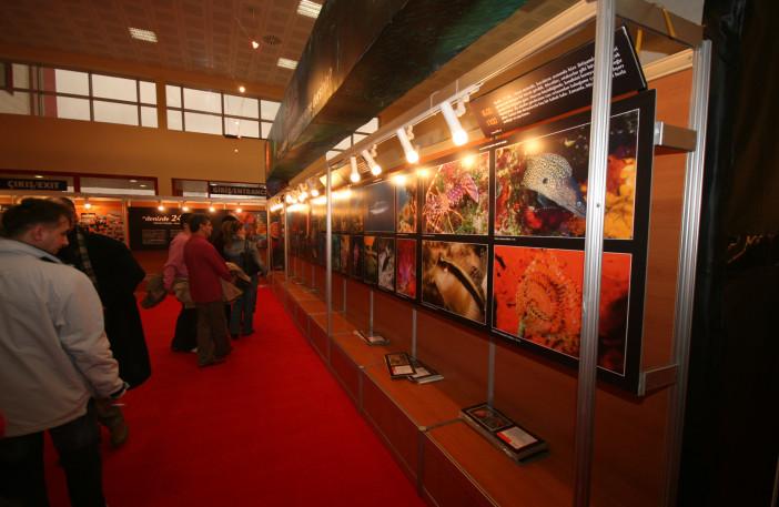 Exhibition of 24 Hours Underwater-008